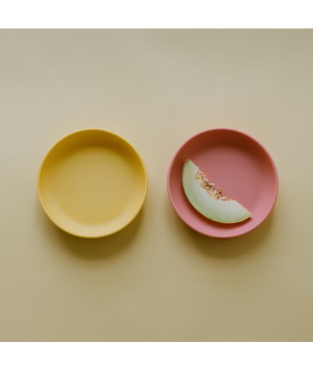 SILICONE SUCTION PLATES - CORAL/MIMOSA