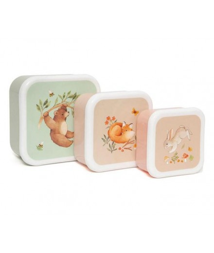 LUNCHBOXES BEAR FRIENDS - 3 PACK