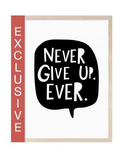 Poster NEVER GIVE UP (A4)